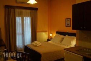 Xenonas Arxontiko_holidays_in_Hotel_Macedonia_Pella_Aridea