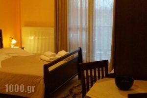 Xenonas Arxontiko_best deals_Hotel_Macedonia_Pella_Aridea