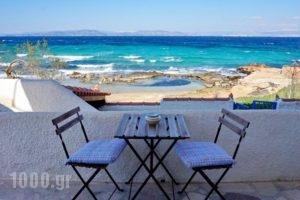 The Beachhouse_holidays_in_Hotel_Piraeus Islands - Trizonia_Methana_Methana Chora