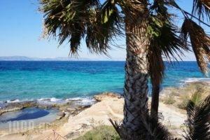 The Beachhouse_lowest prices_in_Hotel_Piraeus Islands - Trizonia_Methana_Methana Chora