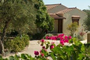 Villas Lefkothea_holidays_in_Villa_Crete_Rethymnon_Plakias