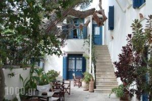 Villa Kynthia_best prices_in_Villa_Crete_Rethymnon_Mylopotamos