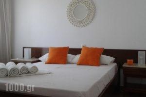 Spiti Sto Aigaio_best deals_Hotel_Central Greece_Evia_Agia Anna