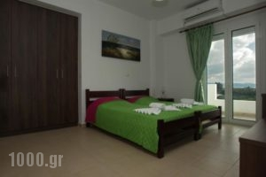 Elpidis Villa_holidays_in_Villa_Crete_Heraklion_Tymbaki