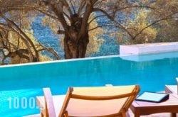 Villa Amoudia in Kefalonia Rest Areas, Kefalonia, Ionian Islands
