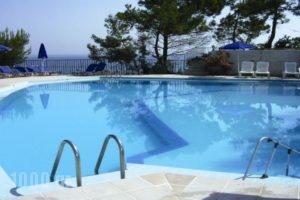 Celia Apartments_accommodation_in_Apartment_Ionian Islands_Zakinthos_Zakinthos Chora