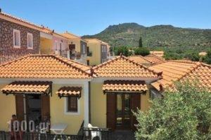 Christina'S Garden_best deals_Hotel_Aegean Islands_Lesvos_Petra