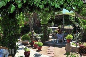Christina'S Garden_best prices_in_Hotel_Aegean Islands_Lesvos_Petra