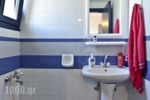 Milos Apartments_best deals_Apartment_Crete_Heraklion_Malia