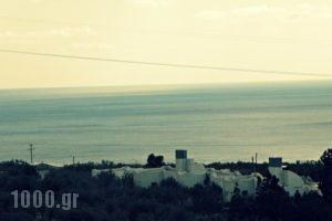 Studios Crete_best prices_in_Hotel_Crete_Lasithi_Ierapetra