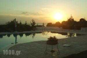 Dreamland Porto Heli_lowest prices_in_Hotel_Piraeus Islands - Trizonia_Spetses_Spetses Chora