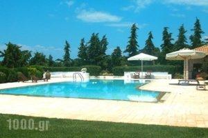 Dreamland Porto Heli_accommodation_in_Hotel_Piraeus Islands - Trizonia_Spetses_Spetses Chora
