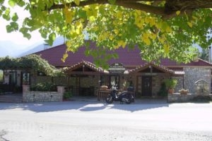 Guesthouse Kastania_best prices_in_Hotel_Peloponesse_Arcadia_Levidi