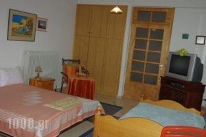 Elati Apartments_travel_packages_in_Thessaly_Trikala_Elati