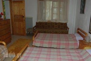 Elati Apartments_best deals_Apartment_Thessaly_Trikala_Elati