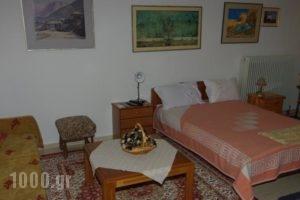 Elati Apartments_best prices_in_Apartment_Thessaly_Trikala_Elati