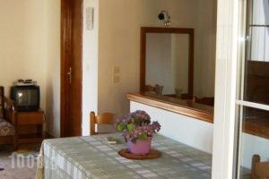 Apartments Mary_best deals_Apartment_Ionian Islands_Corfu_Corfu Chora