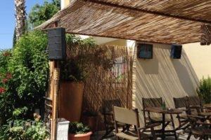 Manine Apartments_best deals_Apartment_Dodekanessos Islands_Kos_Kos Chora