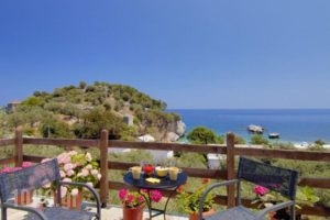 Palia Damouhari_accommodation_in_Hotel_Thessaly_Magnesia_Milies