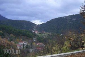 Guesthouse Kastania_holidays_in_Hotel_Peloponesse_Arcadia_Levidi