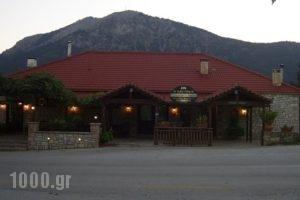 Guesthouse Kastania_best deals_Hotel_Peloponesse_Arcadia_Levidi