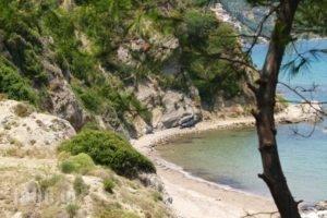 Celia Apartments_best deals_Apartment_Ionian Islands_Zakinthos_Zakinthos Chora