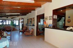 Celia Apartments_holidays_in_Apartment_Ionian Islands_Zakinthos_Zakinthos Chora