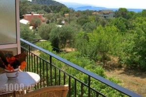 Kefalas Apartments_holidays_in_Apartment_Epirus_Preveza_Sarakino