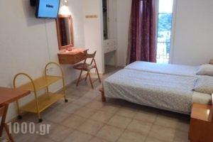 Elite Apartments_best deals_Apartment_Dodekanessos Islands_Kalimnos_Kalimnos Rest Areas