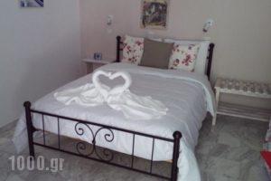 Pension'Sofia_lowest prices_in_Hotel_Cyclades Islands_Paros_Paros Chora
