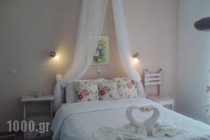 Pension'Sofia_best prices_in_Hotel_Cyclades Islands_Paros_Paros Chora