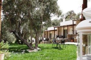 Naiades Villas_holidays_in_Villa_Central Greece_Evia_Karystos