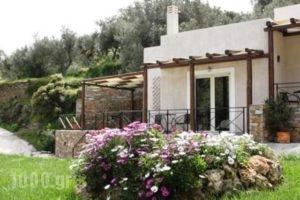 Naiades Villas_accommodation_in_Villa_Central Greece_Evia_Karystos