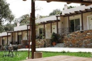 Naiades Villas_travel_packages_in_Central Greece_Evia_Karystos
