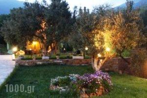 Naiades Villas_best deals_Villa_Central Greece_Evia_Karystos