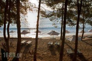Candia Park Village_best deals_Hotel_Crete_Lasithi_Ammoudara