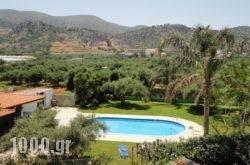 Ibiscus Hotel Malia in Malia, Heraklion, Crete