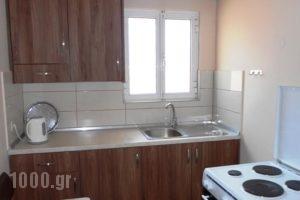 Rapanos Apartments_best deals_Apartment_Ionian Islands_Corfu_Palaeokastritsa