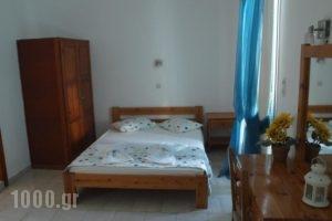 La Selini_accommodation_in_Hotel_Cyclades Islands_Paros_Paros Chora