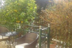 Iriana Village Inn_lowest prices_in_Hotel_Ionian Islands_Ithaki_Ithaki Chora