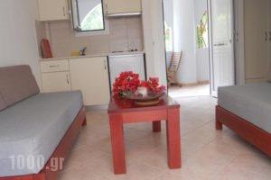 Anavra Studios_lowest prices_in_Hotel_Ionian Islands_Lefkada_Sivota
