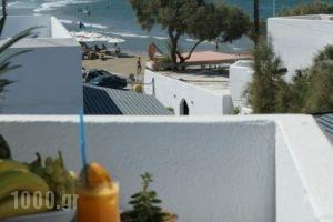 Studios Panos_accommodation_in_Hotel_Cyclades Islands_Naxos_Naxos chora