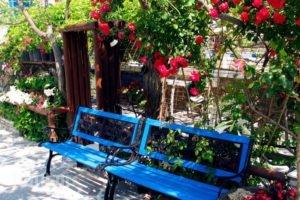 Studios Tasia_best deals_Hotel_Cyclades Islands_Naxos_Naxos chora