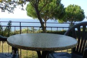 Athanasios Tsoumas Apartments_holidays_in_Apartment_Ionian Islands_Lefkada_Lefkada Chora