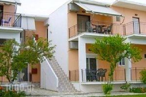 Athanasios Tsoumas Apartments_best deals_Apartment_Ionian Islands_Lefkada_Lefkada Chora