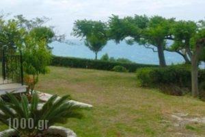 Athanasios Tsoumas Apartments_best prices_in_Apartment_Ionian Islands_Lefkada_Lefkada Chora
