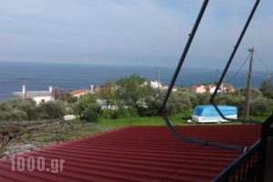 Paradies_accommodation_in_Hotel_Thessaly_Larisa_Agia