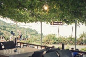 Paradies_lowest prices_in_Hotel_Thessaly_Larisa_Agia
