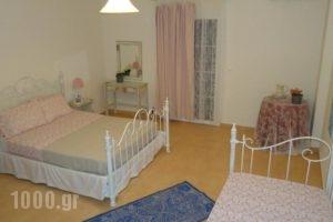 Elaias Gi Residence_lowest prices_in_Hotel_Ionian Islands_Kefalonia_Argostoli