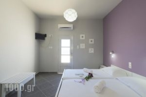 Nikolas Studios_lowest prices_in_Hotel_Dodekanessos Islands_Kalimnos_Kalimnos Rest Areas